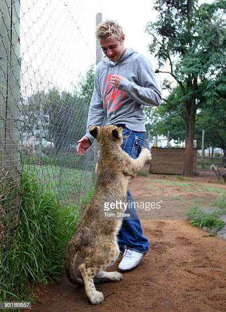 Luke Wright of England plays with a lion cub during a team visit to the Johannesburg Lion Park on November 18 2009 in Johannesburg South Africa