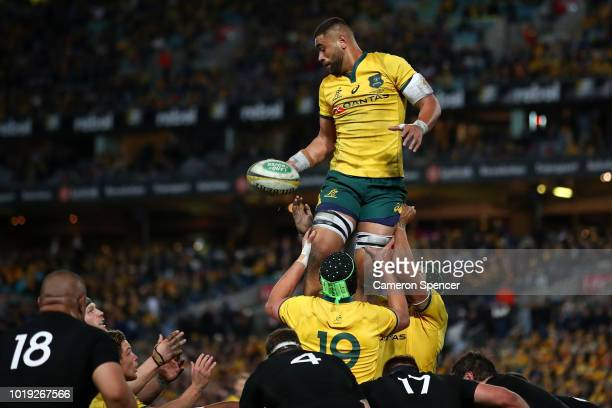 Lukhan Tui of the Wallabies takes a lineout ball during The Rugby Championship Bledisloe Cup match between the Australian Wallabies and the New...