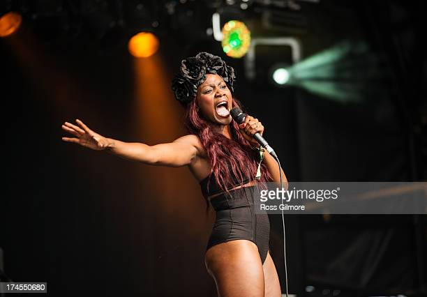 Lulu James performs on stage on Day 2 of Wickerman Festival on July 27 2013 in Dundrennan Scotland