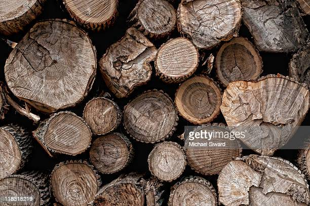 lumber - michael siward stock pictures, royalty-free photos & images