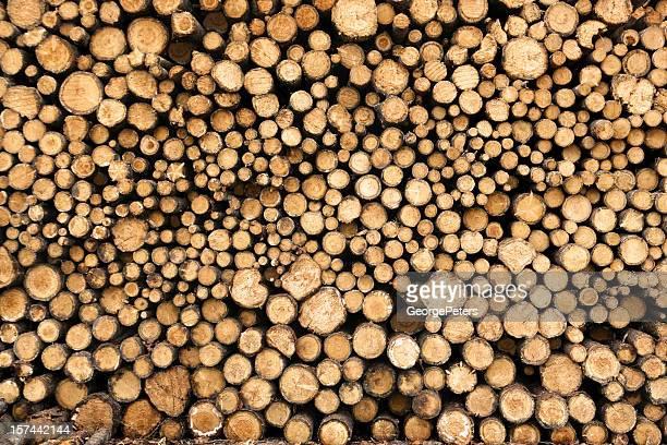 Lumber Yard Pile de journaux