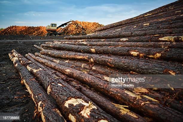 Lumber Yard with machinery