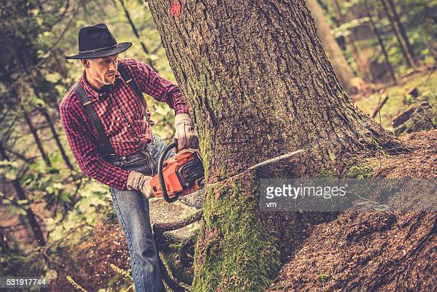 Lumberjack at work