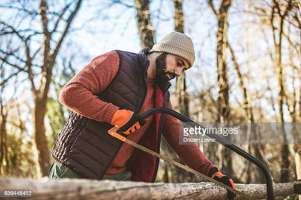 Lumberjack cutting logs with saw