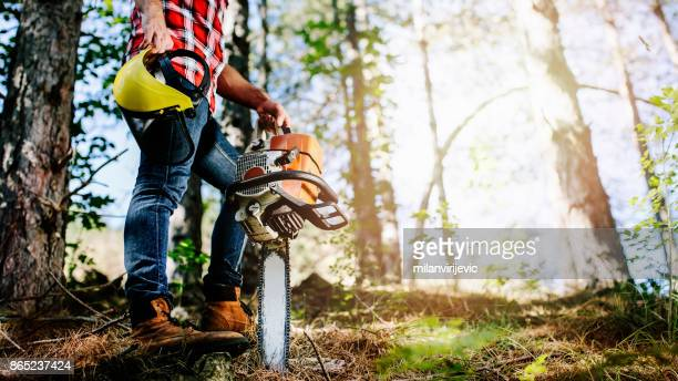 lumberjack - cutting stock pictures, royalty-free photos & images