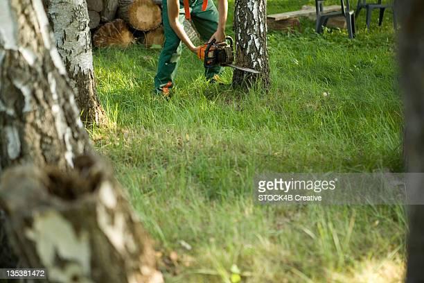 Lumberjack sawing tree trunk, Augsburg, Bavaria, Germany