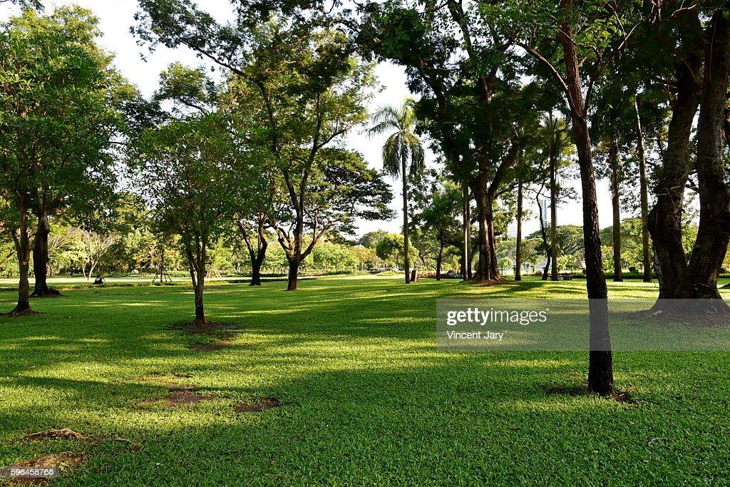 Lumpini park landscape Bangkok Thailand, Asia : Photo