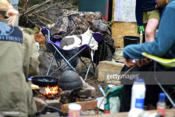 Luna occupies a seat by the camp fire at a protest camp in Jones Hill Wood against the HS2 High Speed Rail line and its proposed route through the...