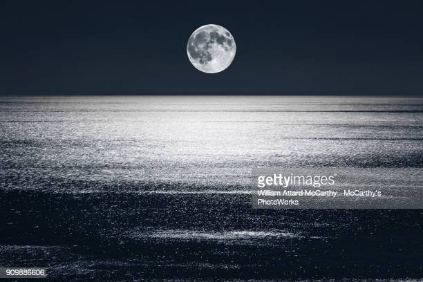 luna - william moon stock pictures, royalty-free photos & images