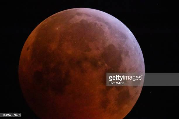 A lunar eclipse takes place turning the moon red as it passes through the earth's shadow on January 21 2019 in Newcastle upon Tyne England It is...