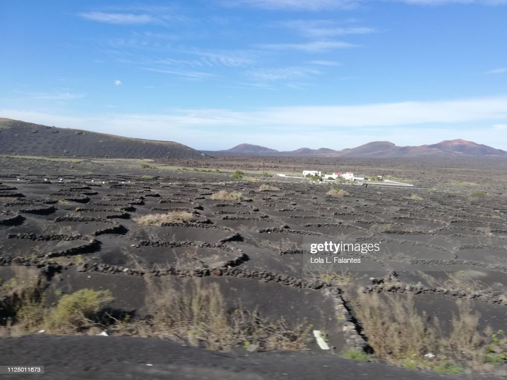 Lunar landscape of La Geria, Lanzarote : Foto de stock