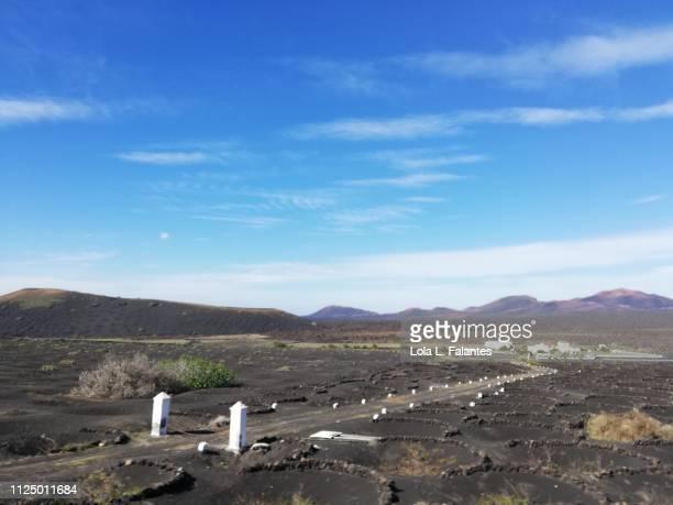 Lunar landscape of La Geria, Lanzarote