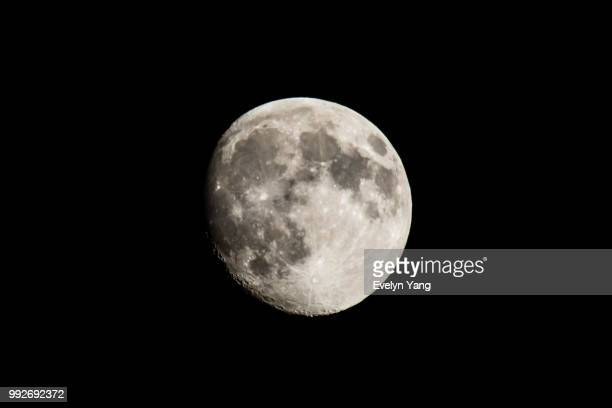 lunar - evelyn yang stock pictures, royalty-free photos & images