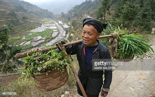 LunarChinafestivalminorityschedFEATURE A Dong minority farmer returns to his home in Xiaohuang village Guizhou Province 19 February 2007 For over...