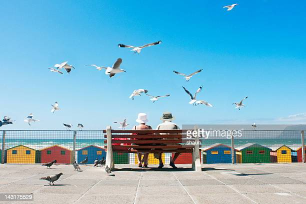 lunch at the beach - south africa stock pictures, royalty-free photos & images