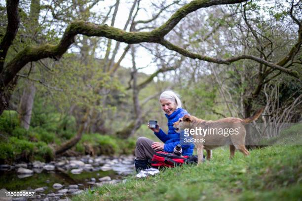 lunch by the river - water's edge stock pictures, royalty-free photos & images