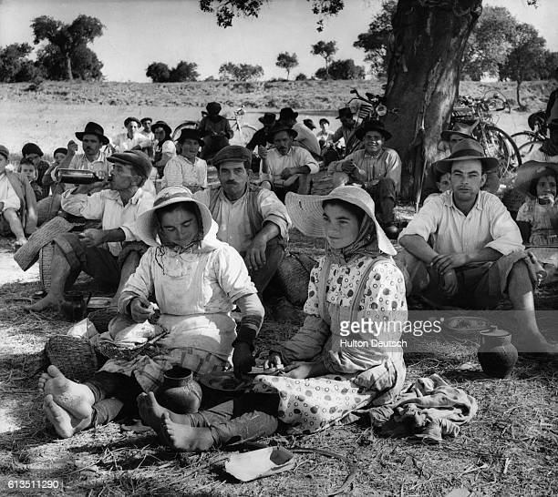 Lunch for Portuguses farm workers during the rice harvest in 1955