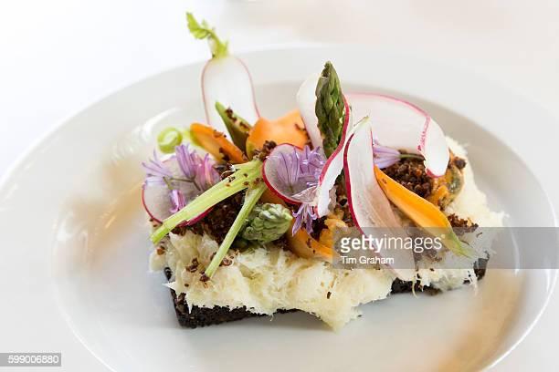 Lunch snacks cod fish Smorrebrod smorgasbord Nordic open sandwich on minimalist white china plate in Denmark