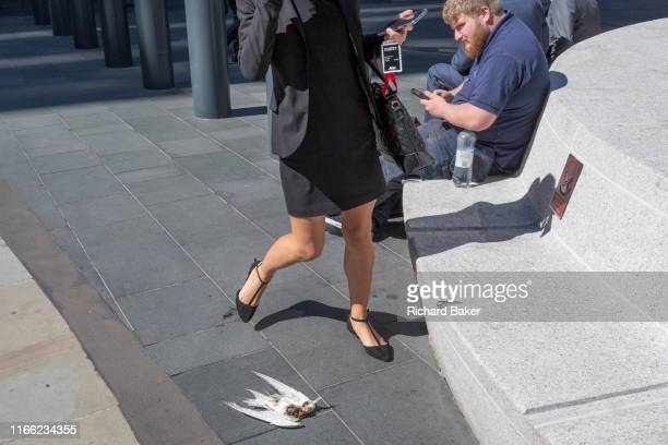 Lunchtime City workers avoid a dead headless bird on the ground at Leadenhall in the City of London the capital's financial district on 3rd September...