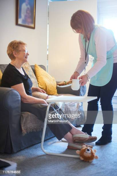 lunchtime for senior woman - meals on wheels stock pictures, royalty-free photos & images