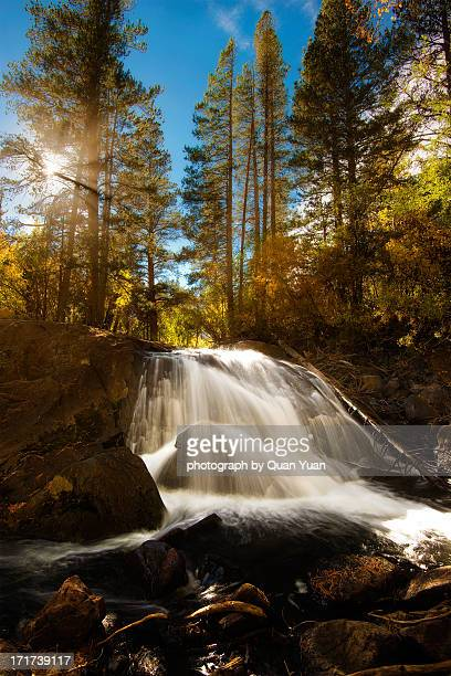 lundy canyon falls - yuan quan stock pictures, royalty-free photos & images