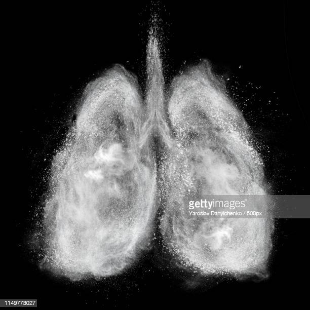 lungs made of white powder explosion isolated on black - lung stock pictures, royalty-free photos & images