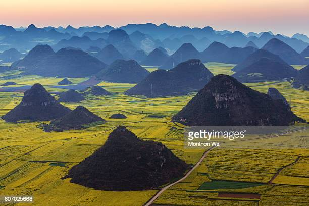 Luoping Yunnan rape flower,China