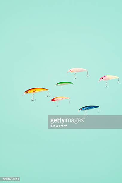 lures on the loose - fly casting stock pictures, royalty-free photos & images