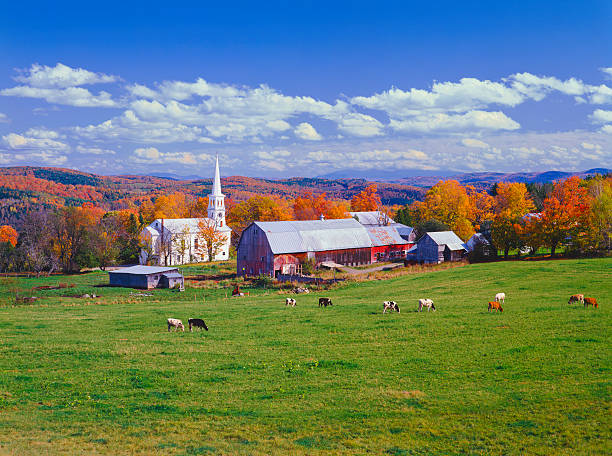 Autumn Country Side In Vermont Wall Art