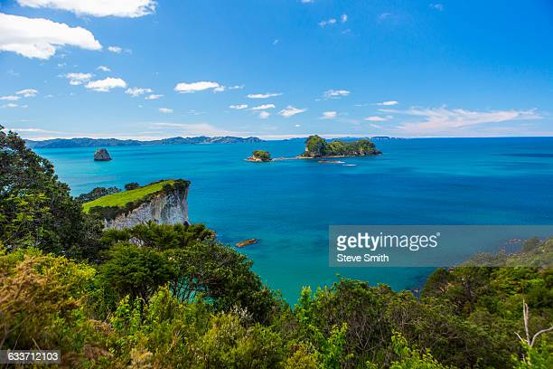 Lush cliff and remote seascape