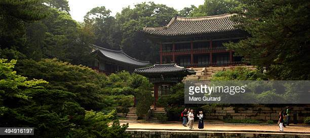 CONTENT] Lush foliage and buildings of Deoksugung Palace