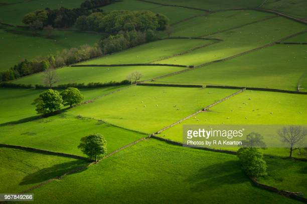 lush green fields in the english countryside - 五月 ストックフォトと画像