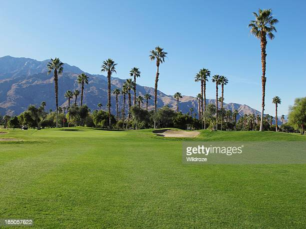 lush green golf course in the palm springs desert - palm springs stock pictures, royalty-free photos & images