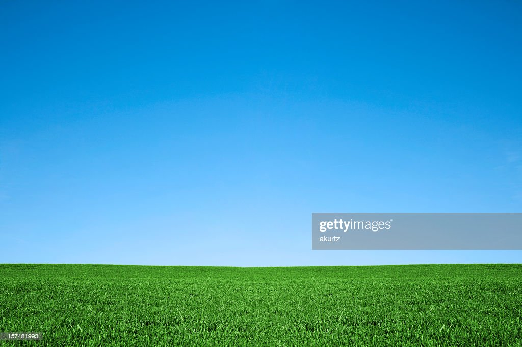 Free grass and blue sky Images Pictures and Royalty Free Stock