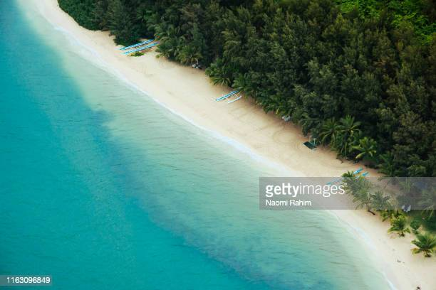 lush green landscape meets a secluded beach, clear blue waters - honolulu, oahu, hawaii - honolulu stock pictures, royalty-free photos & images