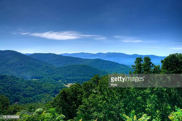 montagnes blue ridge - north carolina photos et images de collection