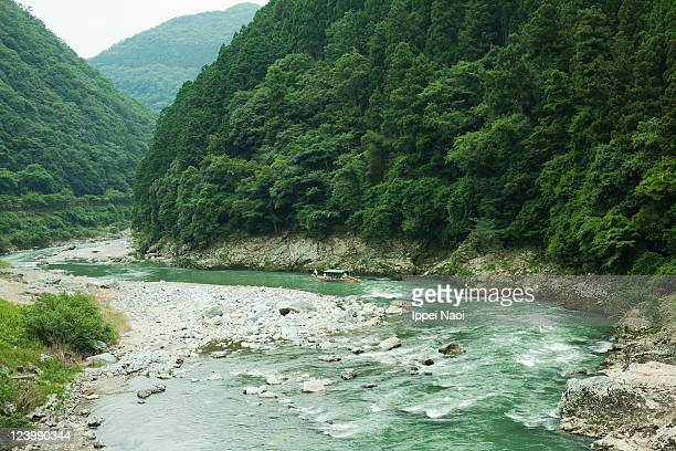 lush green volcanic river gorge, kyoto, japan - ippei naoi stock photos and pictures