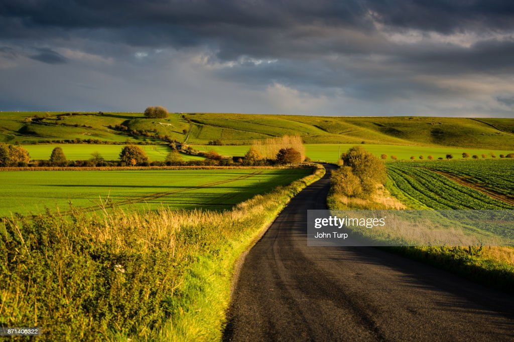Lush Green Wiltshire Scene : Stock Photo