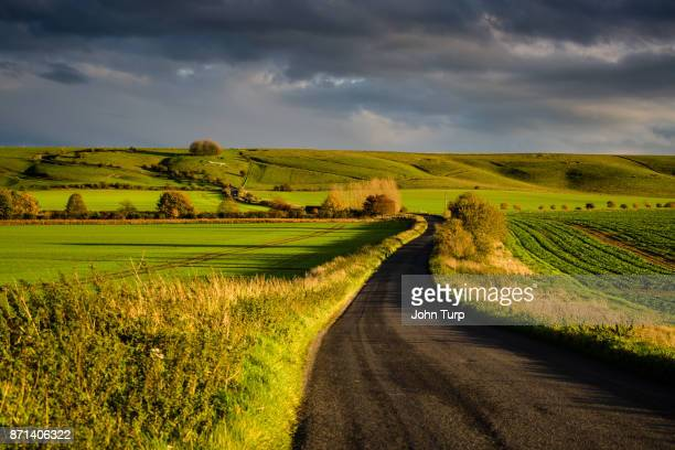lush green wiltshire scene - country road stock photos and pictures