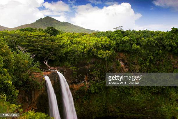 lush scenic waterfall - kauai stock photos and pictures