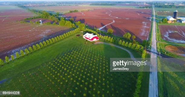 Lush Springtime rural landscape with farm fields lined with trees