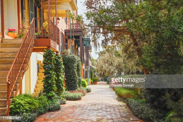 lush street in savannah - savannah stock pictures, royalty-free photos & images
