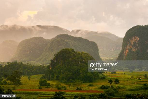 Lush Valley Vinales