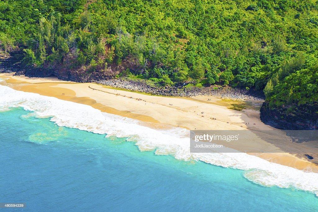 Lush vegetation on the shore in Kauai, Hawaii : Stock Photo