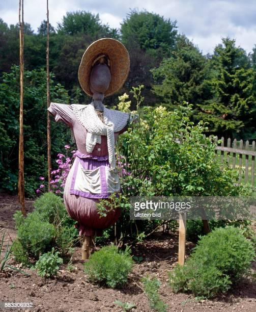Lustig arrangierte Vogelscheuche menschlicher Gestalt im Garten zum Fernhalten von Voegeln aus den Gemuesebeeten