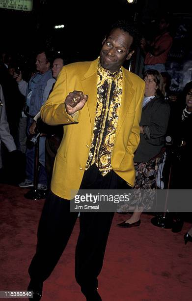 Luther Vandross during 'The Bodyguard' Los Angeles Premiere at Mann's Chinese Theater in Hollywood California United States