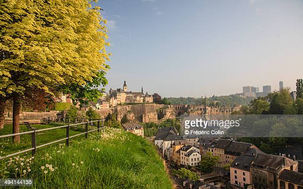 Luxembourg morning light green view