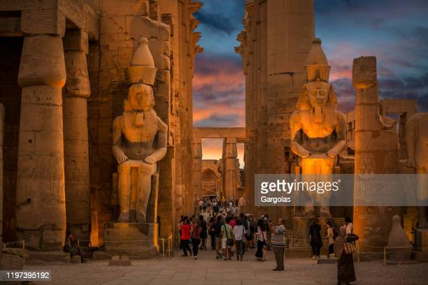 luxor temple at sunset, egypt - luxor thebes stock pictures, royalty-free photos & images