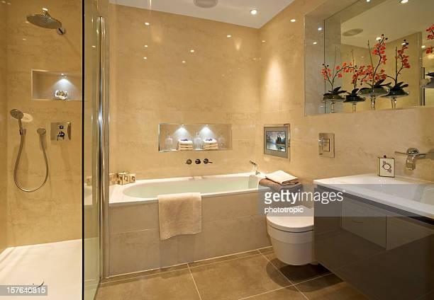 豪華なバスルームとシャワー