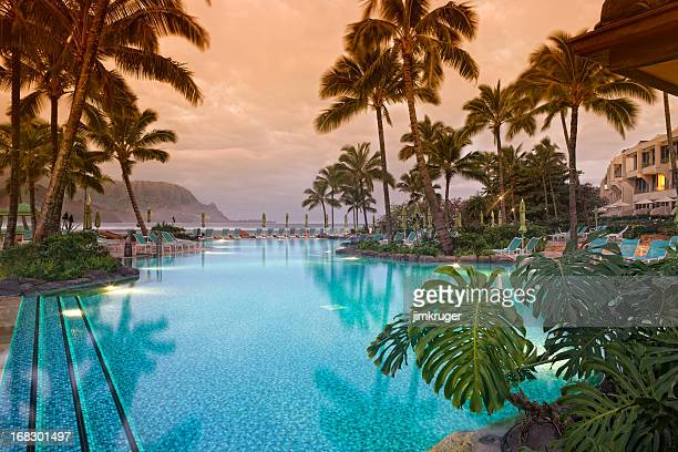 luxurious hawaiian 5 star resort. - tourist resort stock pictures, royalty-free photos & images